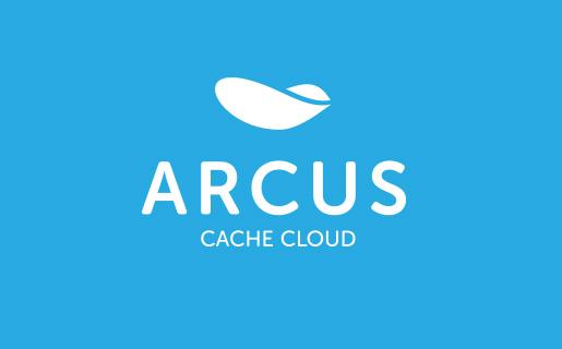 ARCUS 차별 기능, 사용 이슈, 그리고 카카오 적용 사례